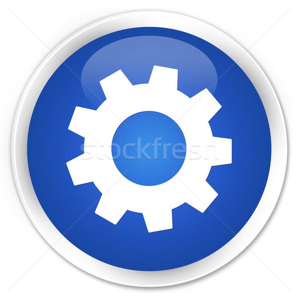 Folyamat beállítások ikon kék gomb háló Stock fotó © faysalfarhan