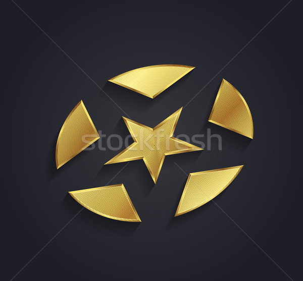 Realistic vector graphic ribbed gold star shaped symbol with neg Stock photo © feabornset
