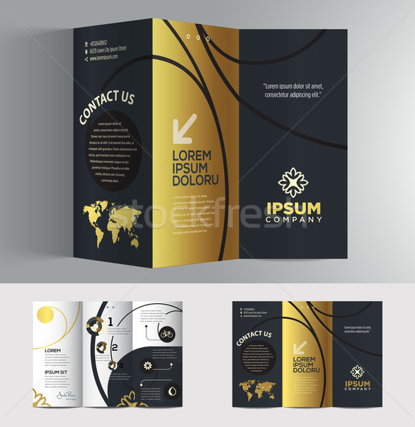 Vector graphic elegant business brochure design for your company Stock photo © feabornset