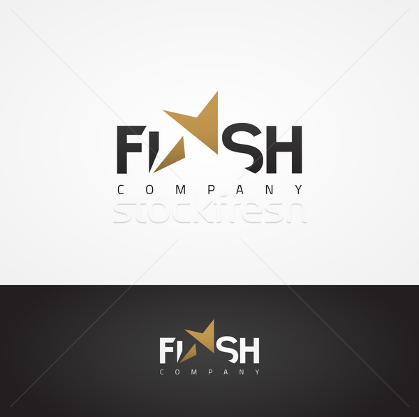 Vector graphic elegant Flash symbol with star shape for your com Stock photo © feabornset