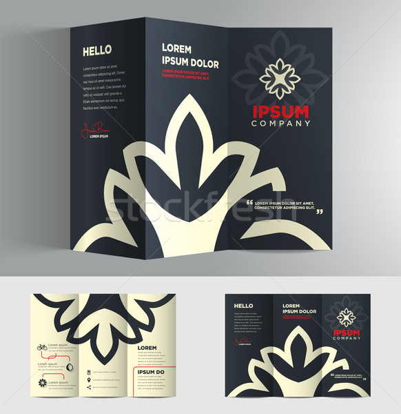 Vector grafische elegante business brochure ontwerp Stockfoto © feabornset