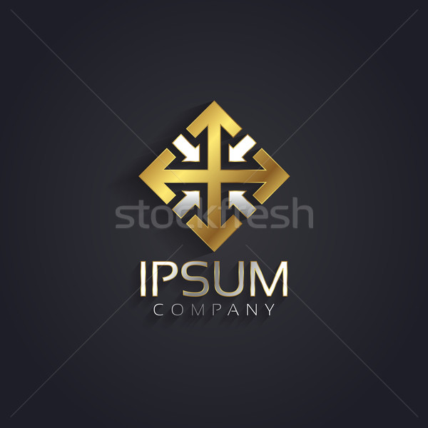 Vector graphic elegant silver and gold symbol for your company w Stock photo © feabornset