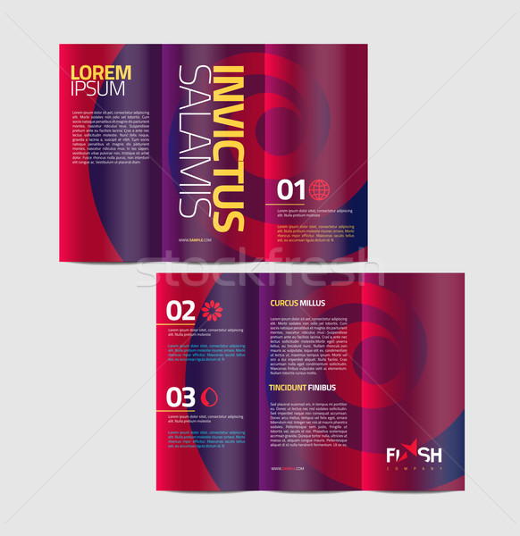 Vector graphic elegant abstract business brochure design with sp Stock photo © feabornset