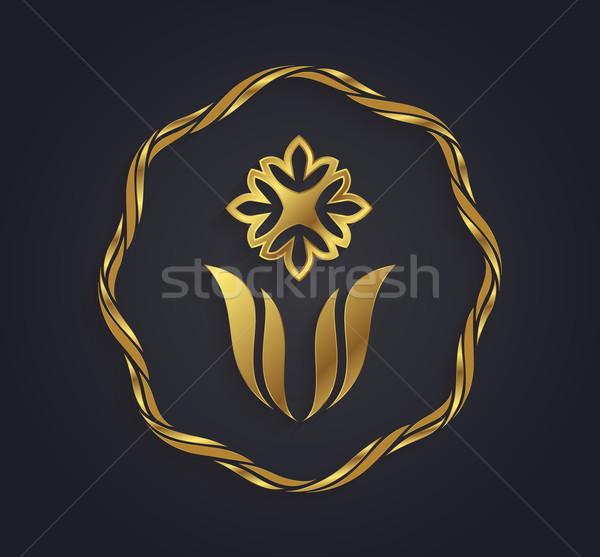 декоративный вектора графических золото цветок символ Сток-фото © feabornset