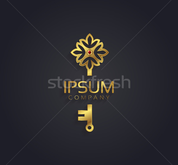Vector graphic gold and ruby flower / key shaped symbol with sam Stock photo © feabornset