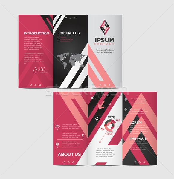 вектора графических элегантный бизнеса брошюра дизайна Сток-фото © feabornset