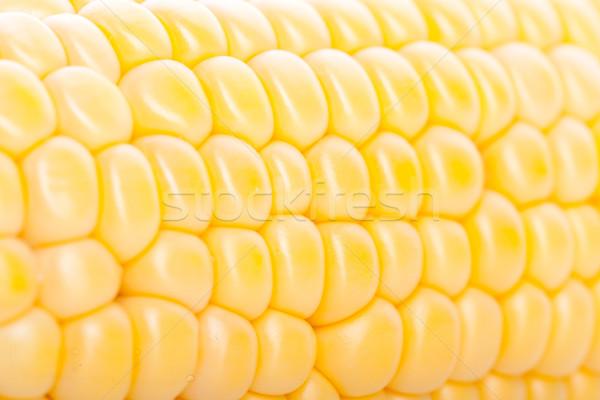 corn pieces on the cob Stock photo © feedough
