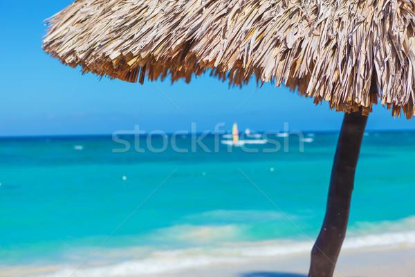 Paja paraguas primer plano hermosa playa tropical pequeño Foto stock © feedough