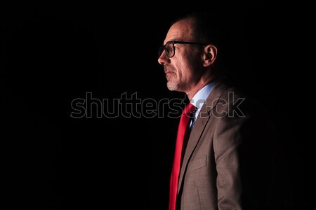 side view of an old business man looking away  Stock photo © feedough
