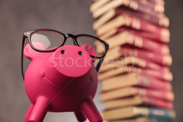 Stockfoto: Gelukkig · spaarvarken · bril · omhoog