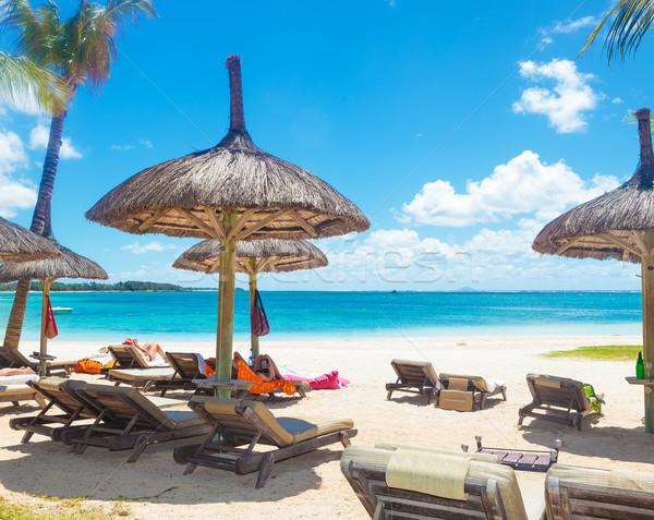 Perfect plaats strand stro parasols palmbomen Stockfoto © feedough