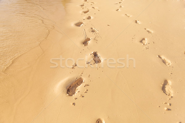 foot prints on the beach of seychelles Stock photo © feedough