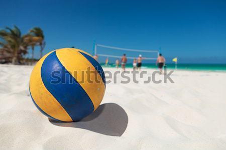 ボレー ボール ビーチ 黄色 青 スポーツ ストックフォト © feedough