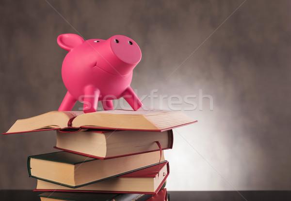 Rosa alcancía pie superior libros Foto stock © feedough