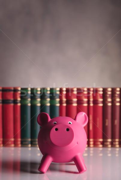 Student spaargeld lening spaarvarken advertentie boeken Stockfoto © feedough
