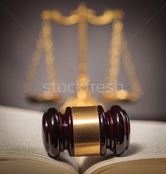 Kalapács törvény könyv arany mérleg vásár Stock fotó © feedough