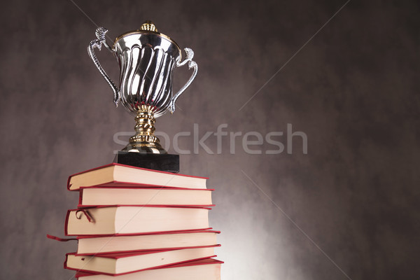 trophy cup on a pile of books with copyspace Stock photo © feedough