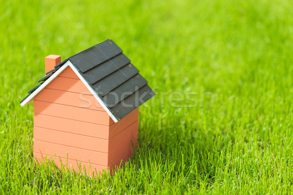 little wooden house with no windows in grass Stock photo © feedough