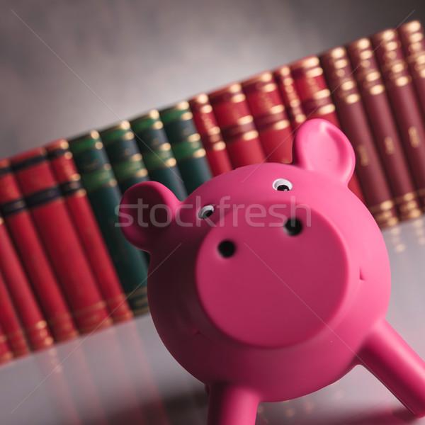 Foto stock: Rosa · piggy · bank · olhando · feliz · livro
