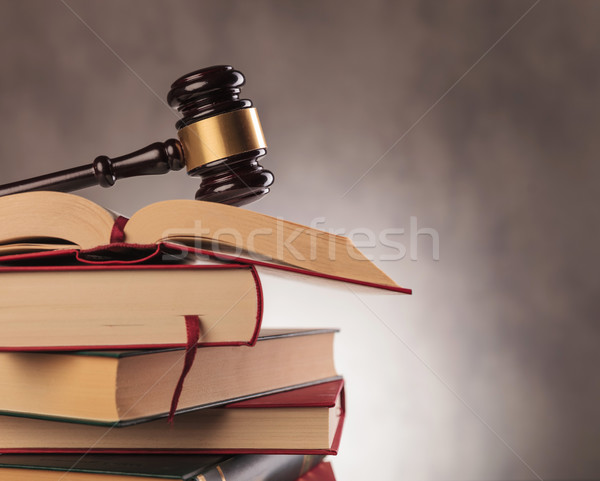 judge's gavel on top  of books with copyspace Stock photo © feedough