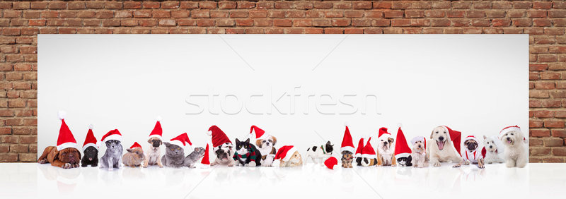 Stock photo: santa claus animals near big blank billboard