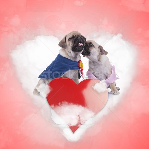 Hercegnő csók legelső szerető szeretet felhő Stock fotó © feedough