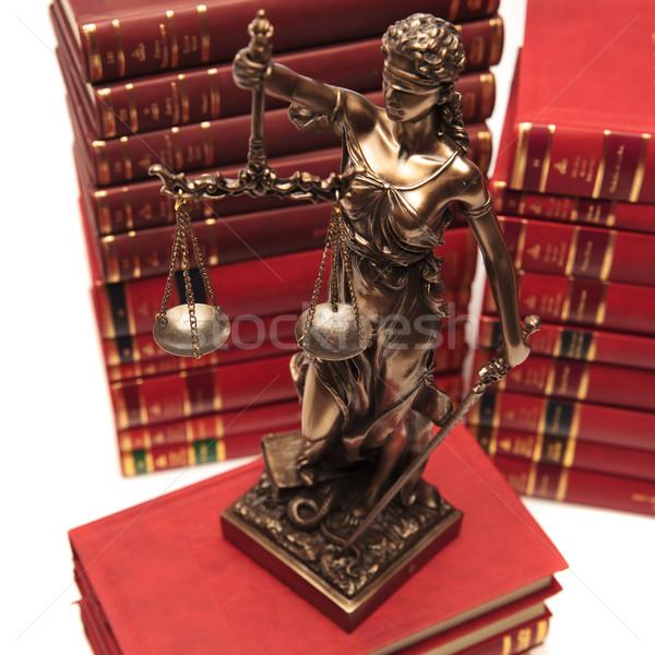 Adalet tanrıça kitap kütüphane avukat özgürlük Stok fotoğraf © feedough