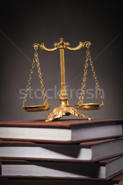 Apprentissage droit or échelle livres Photo stock © feedough