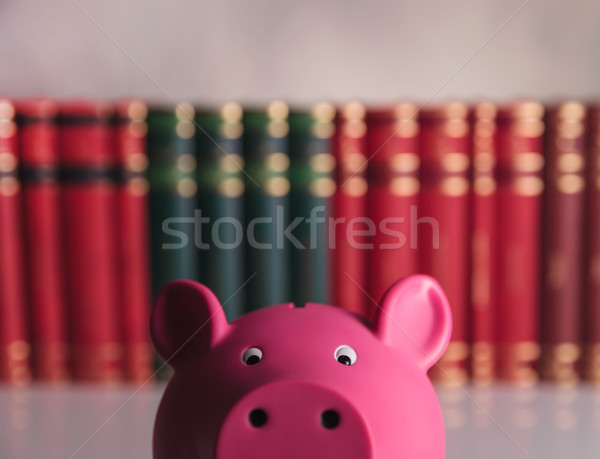 closeup picture:  piggy bank in front of books Stock photo © feedough