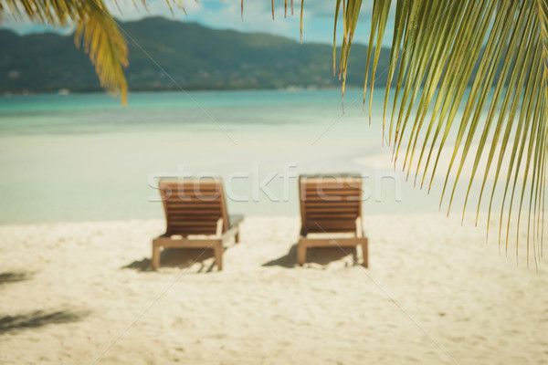 picture of two sunbeds on the beach, under the palm trees Stock photo © feedough