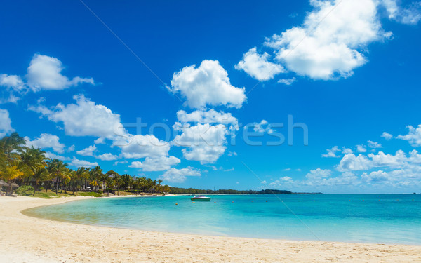 beautiful bay in mauritius island with speed boat Stock photo © feedough