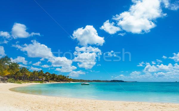 красивой Маврикий острове скорости лодка Солнечный Сток-фото © feedough