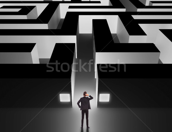 Affaires énorme labyrinthe homme d'affaires pense homme Photo stock © feedough