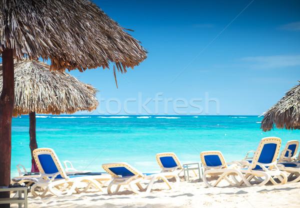Tropikal görmek plaj saman Stok fotoğraf © feedough