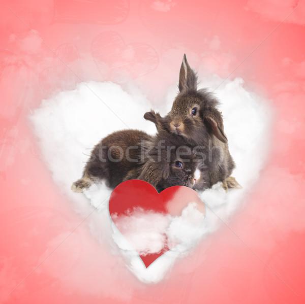 Feliz em pé juntos amor nuvem dia dos namorados Foto stock © feedough