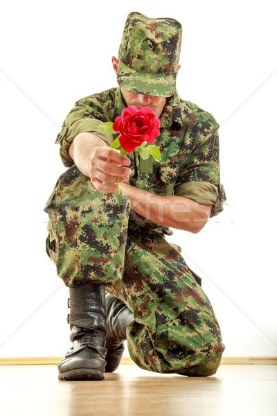 Katonaság katona térdel tart piros rózsa diverzitás Stock fotó © feelphotoart