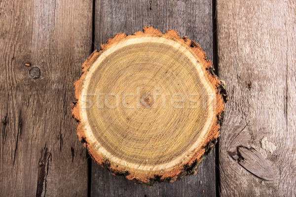 Tree stump round cut with annual rings on wooden background Stock photo © feelphotoart