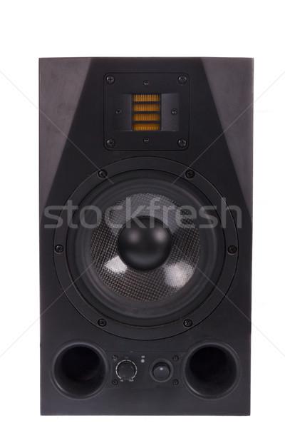 Audio hangszóró izolált fehér profi stúdió Stock fotó © feelphotoart
