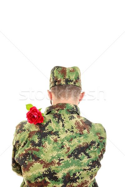 Сток-фото: назад · солдата · красную · розу · плечо · равномерный · романтические