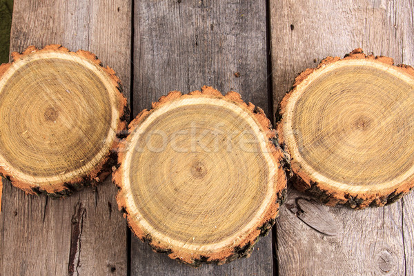 Seção transversal árvore crescimento anéis Foto stock © feelphotoart