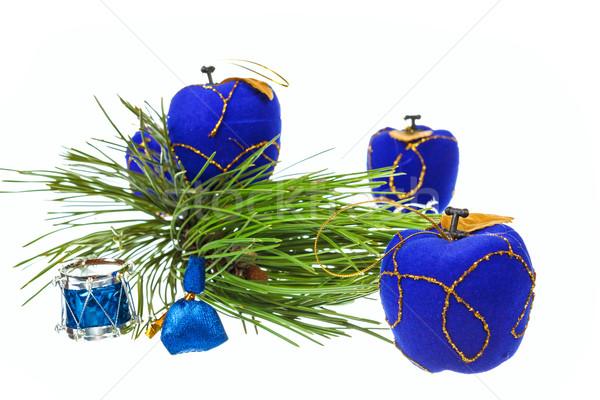 декоративный синий украшения соснового ель Рождества Сток-фото © feelphotoart