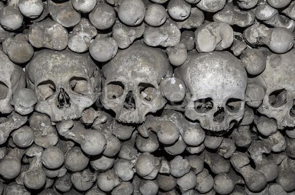 Emberi csontok Csehország test halott félelem Stock fotó © FER737NG