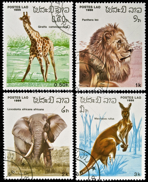 коллекция марок Лаос свойства жираф Сток-фото © FER737NG