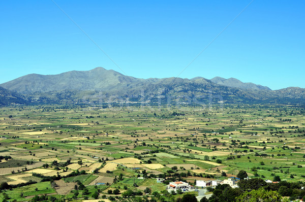 View of the fertile Lassithi Plateau in Crete, Greece. Stock photo © FER737NG