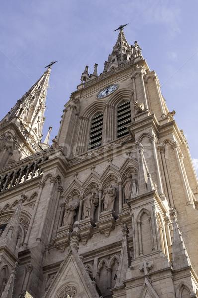 Basiliek Buenos Aires Argentinië gothic toren tempel Stockfoto © FER737NG