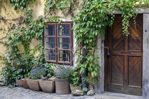 Régi ház homlokzat egyszerű fából készült ajtó zöld levelek Stock fotó © FER737NG
