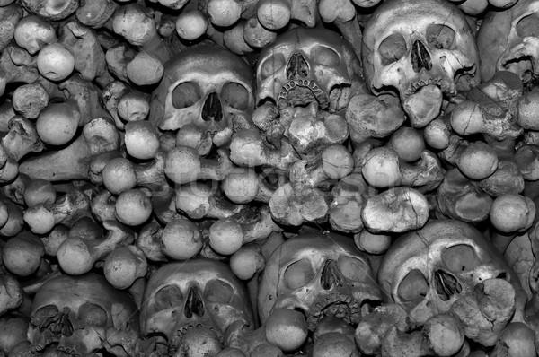 Insan kemikleri Çek Cumhuriyeti vücut ölü korku Stok fotoğraf © FER737NG