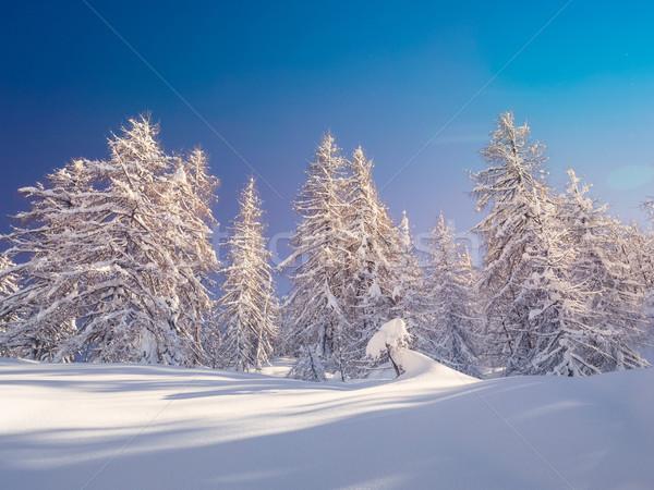 冬 風景 スキー センター 山 アルプス山脈 ストックフォト © Fesus