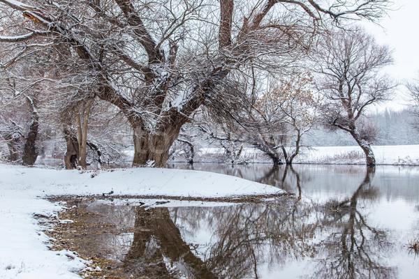Winter landscape river Zagyva in Hungary Stock photo © Fesus