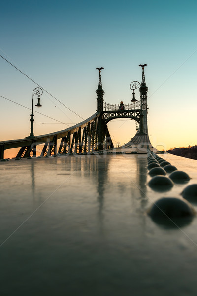 Liberty Bridge - Budapest, Hungary  Stock photo © Fesus